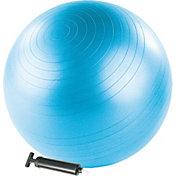 Stott Pilates 22'' Stability Ball