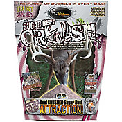 Wildgame Innovations Sugar Beet CRUSH Attractant