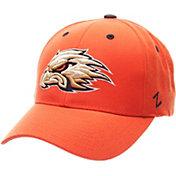 Zephyr Men's Auburn Tigers Orange Competitor Adjustable Hat