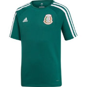 adidas Youth Mexico Green Training T-Shirt