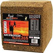 Ani-Logics Ani-Protein Block 365 Deer Attractant