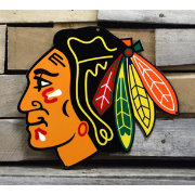 Authentic Street Signs Chicago Blackhawks Steel Logo Sign