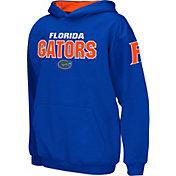 Colosseum Boys' Florida Gators Blue Pullover Hoodie