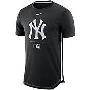Nike Men's New York Yankees Dri-FIT Team-Issued Legend T-Shirt