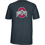 Scarlet & Gray Men's Ohio State Buckeyes Heathered Gray Flex T-Shirt