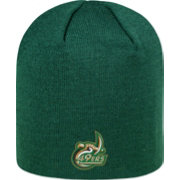 Top of the World Men's Charlotte 49ers Green TOW Classic Knit Beanie