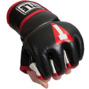 TITLE Boxing MMA Performance Ground & Pound Training Gloves