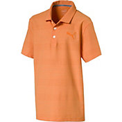 PUMA Boys' Aston Jr Golf Polo