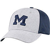 Top of the World Men's Michigan Wolverines Grey/Blue Faboo 1Fit Hat