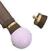 Hornung's Golf Ball Eagle
