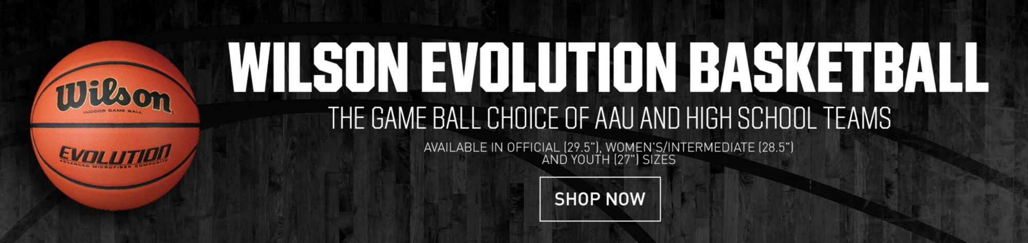 Game on closeouts sporting goods - Wilson Evolution Basketballs