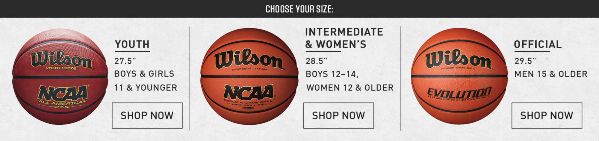 basketballs - black friday sale 2018 | best price guarantee at dick's