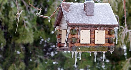 Birdhouse hanging from tree covered in ice
