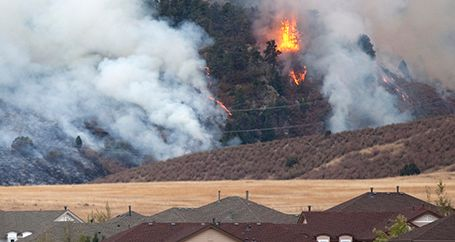 Wildfire burning through trees and powerlines