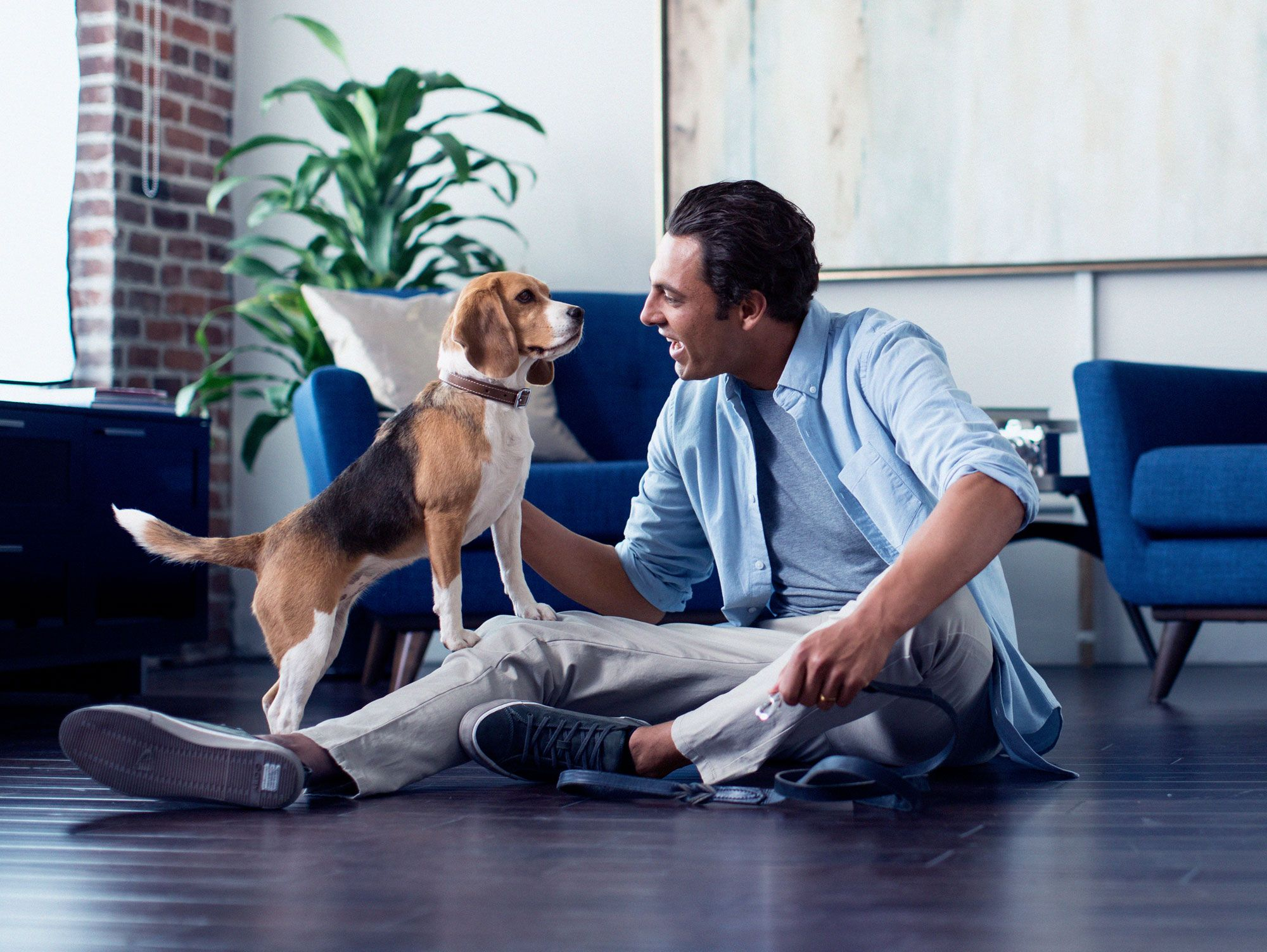 Insurance For Dogs >> Pet Insurance Plans For Dogs Cats Farmers Insurance