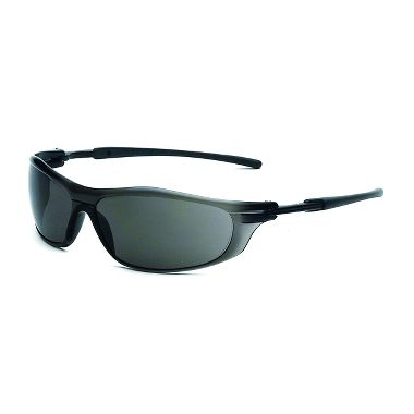 Rail Safety Glasses with Fog Free Gray Lens