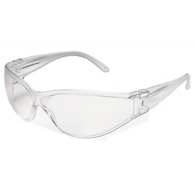 Brace Safety Glasses w/ Fog Free Clear Lens