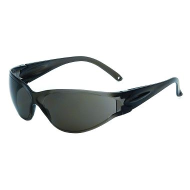 Brace Safety Glasses w/ Fog Free Gray Lens