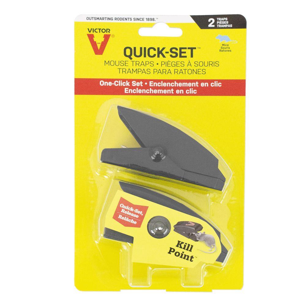 Quick Set Mouse trap 2pk