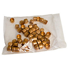 Fitting Copper Test Cap 1/2 Inch (Bag Of 25)