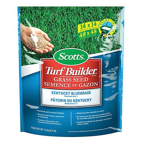 Scotts Turf Builder Kentucky Blue Grass Seed