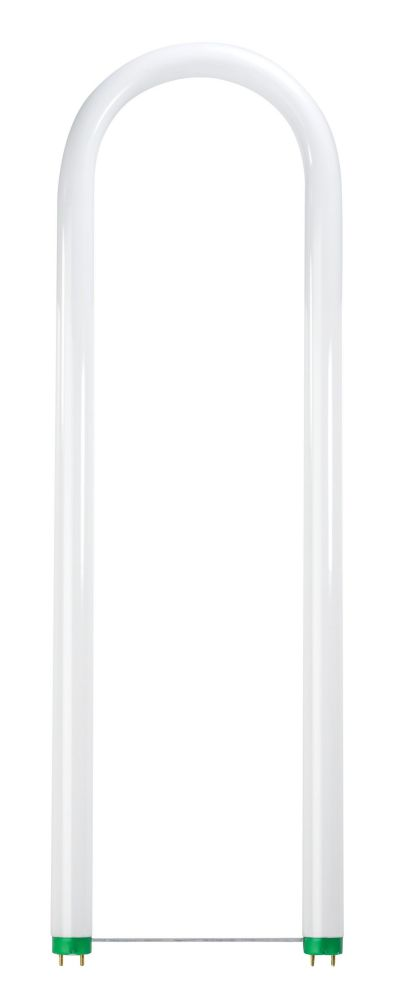 Fluorescent 40W T12 U Bent Daylight Deluxe (6500K)