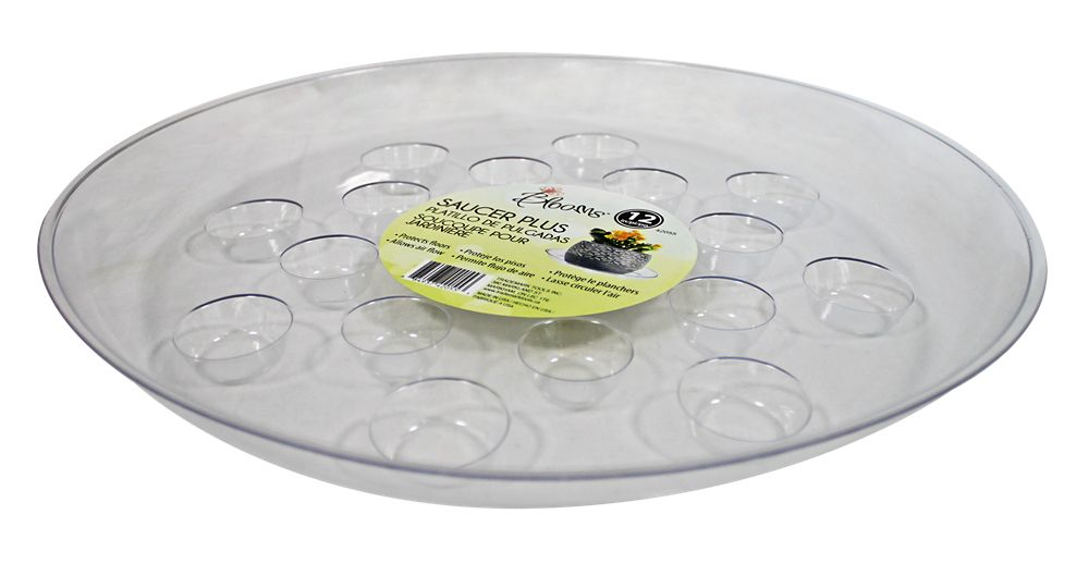 Blooms 12 inch  Saucer Plus