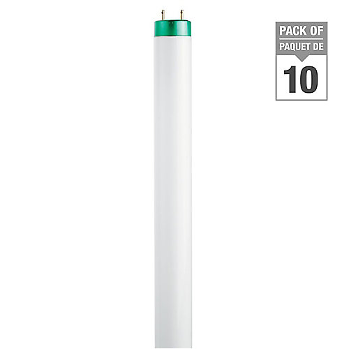 """Fluorescent 32W T8 48"""""""" Cool White (4100K) - (10-Pack)"""