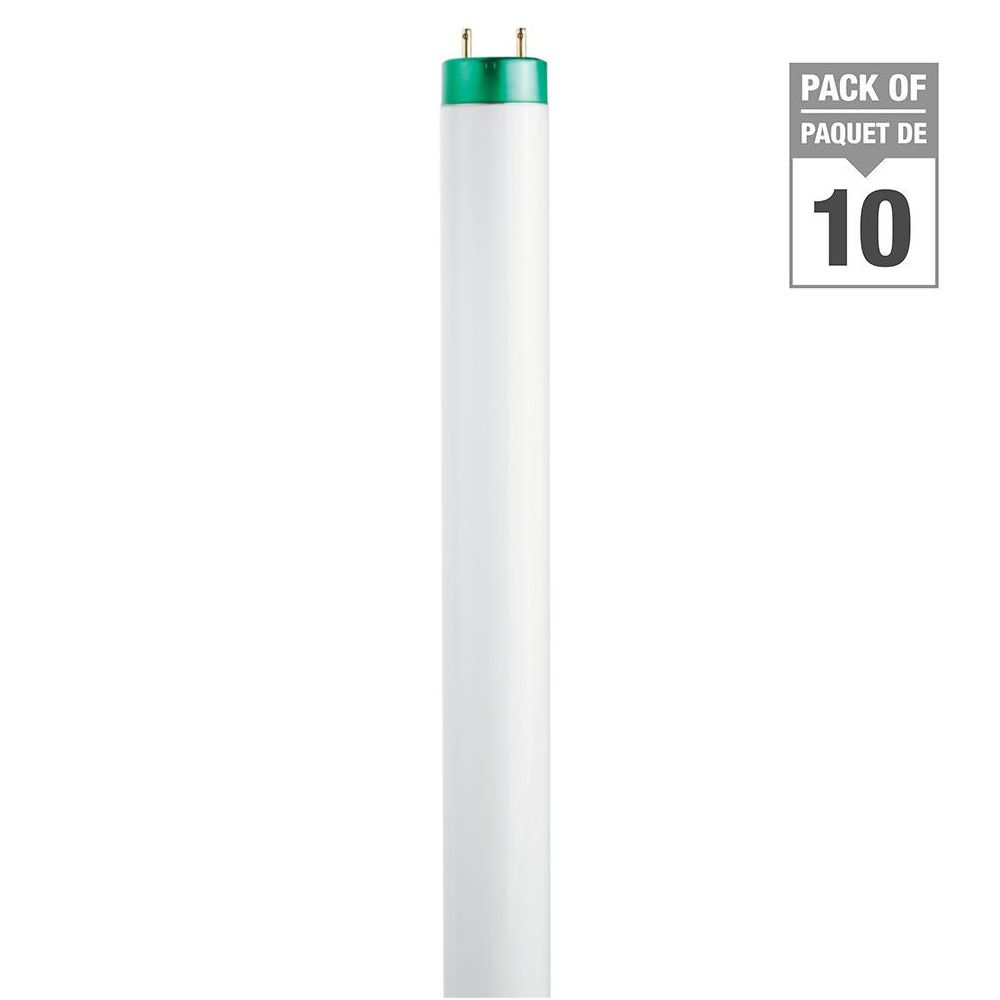 """Fluorescent 32W T8 48"""" Cool White (4100K) - 10 Pack"""