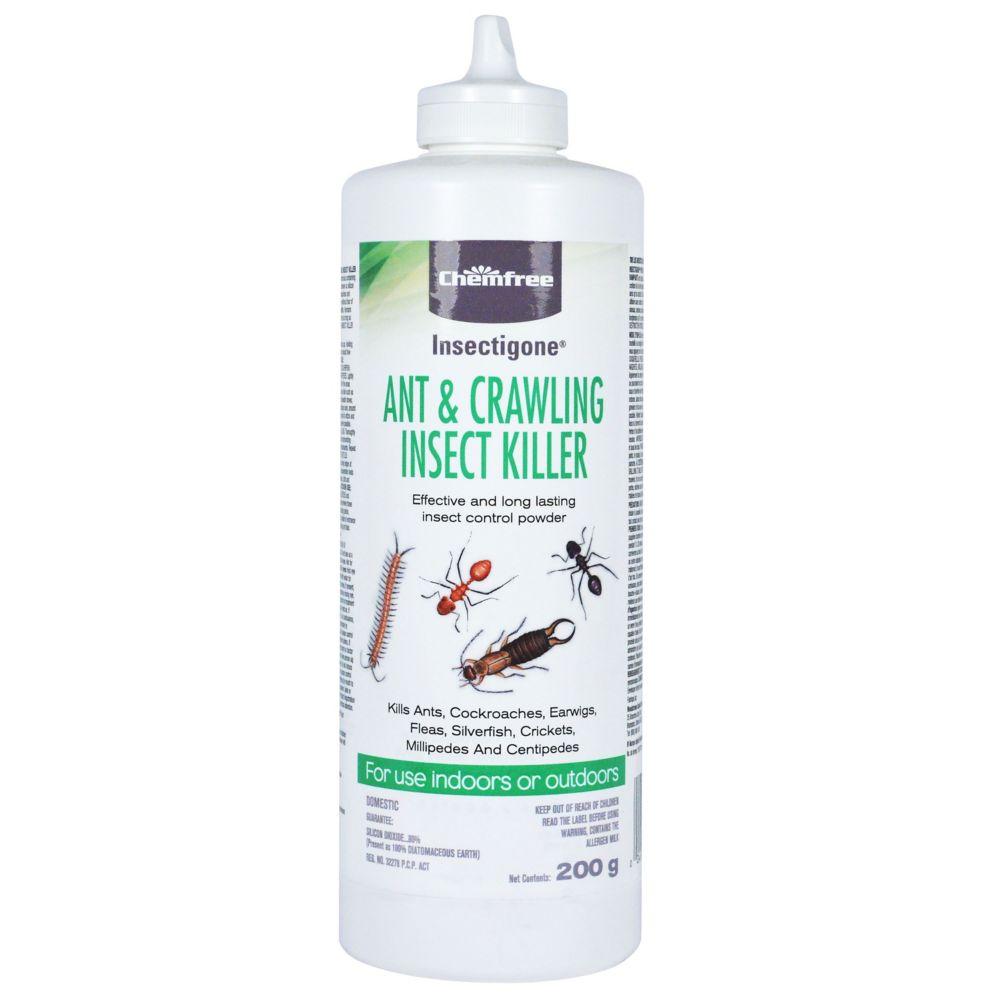 Insecticide pour fourmis dInsectigone � 200g