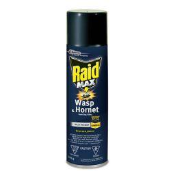 Raid Max Wasp & Hornet Foam