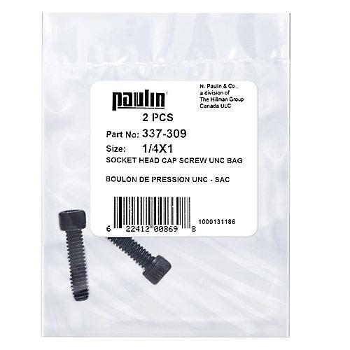1/4X1 Sock Hd Cap Screw Unc 2Pcs