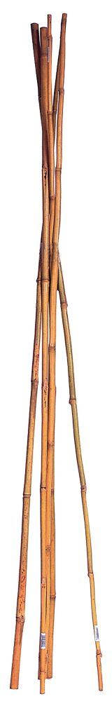 "Select Bamboo 72"""