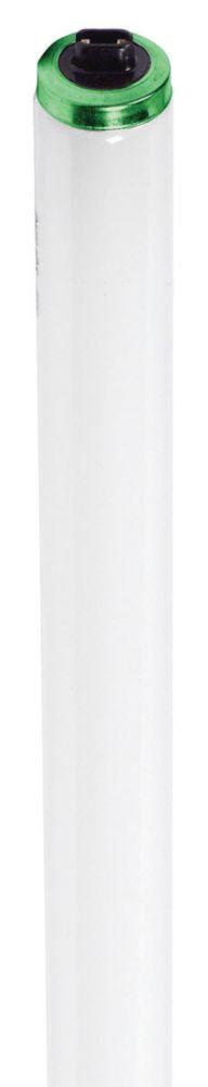 Fluorescent Linéaire T12 60W - à flux élevé 48 po Blanc froid (4100K) HO