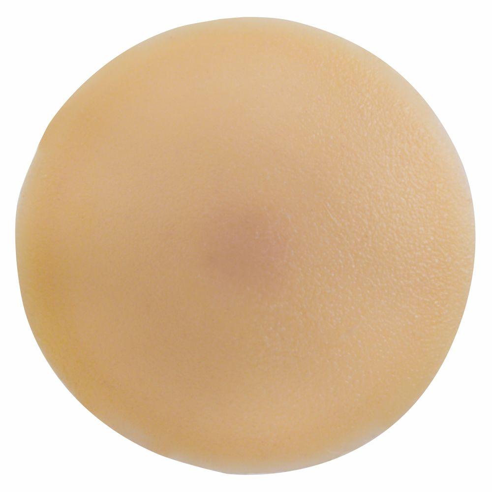 #1 Plastic Screw Cover Beige