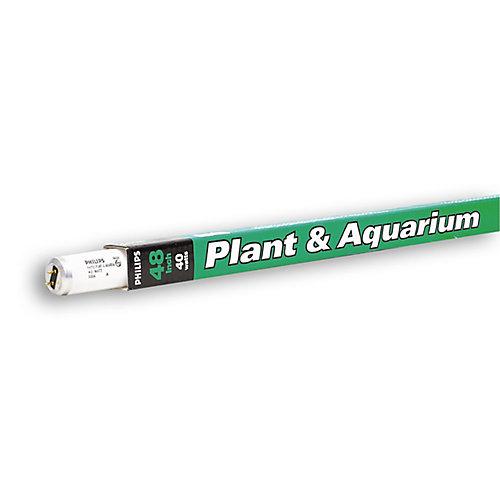 Fluorescent Linéaire  T12 40 W 48 po plante