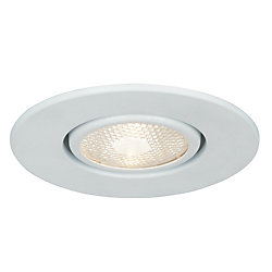 Commercial Electric 4 In. PAR20 Flush Gimbal, White Finish