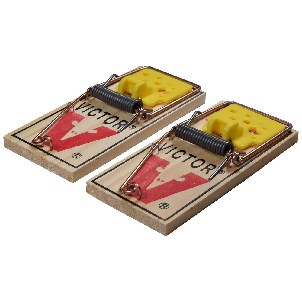 Easy Set Mouse Trap 2 pack