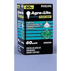 60W A19 Plant Light