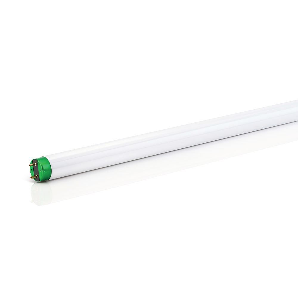 "Fluorescent 30W T8 36"" Cool White (4100K)"