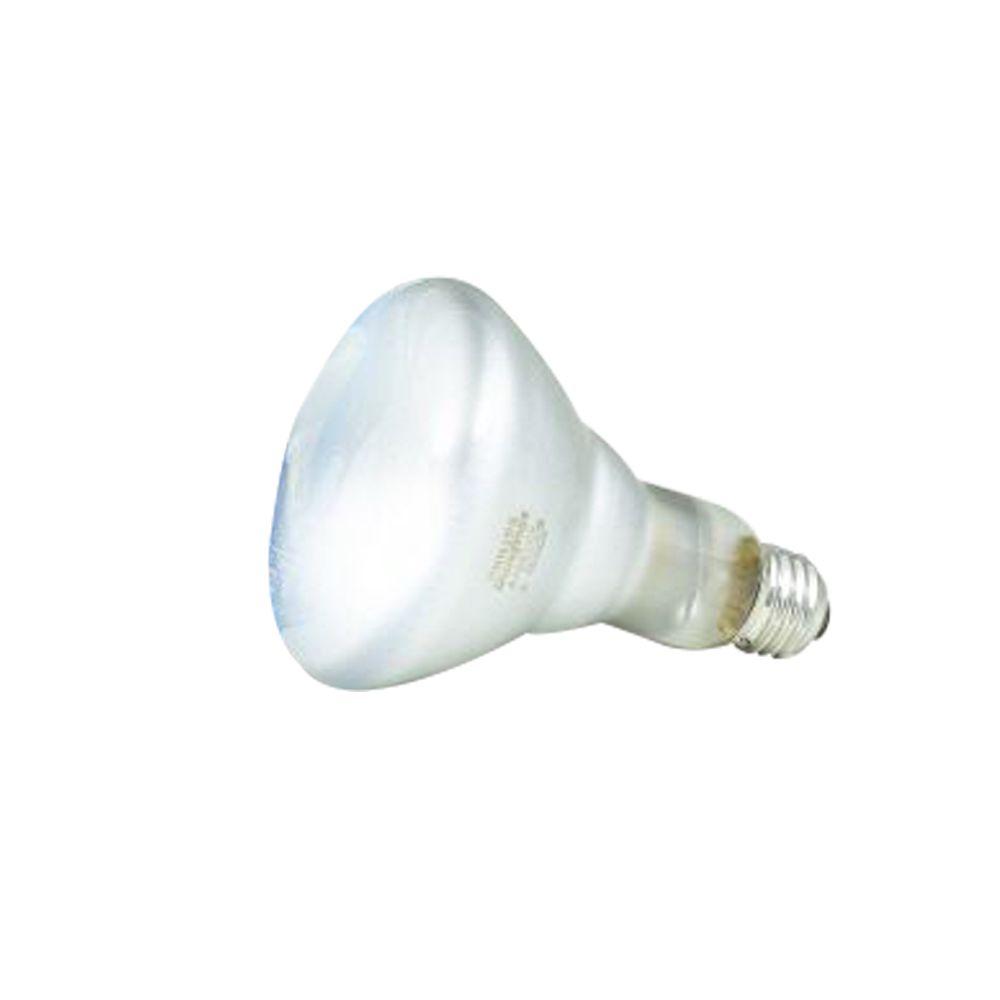 65 Watt Br30 In.candscent Reflector Flood Light
