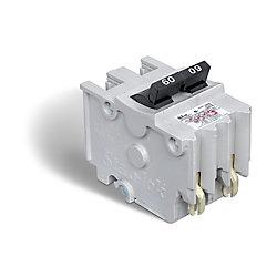 Schneider Electric Disjoncteur enfichable (NA) Stab-lok de 60A biipolaire