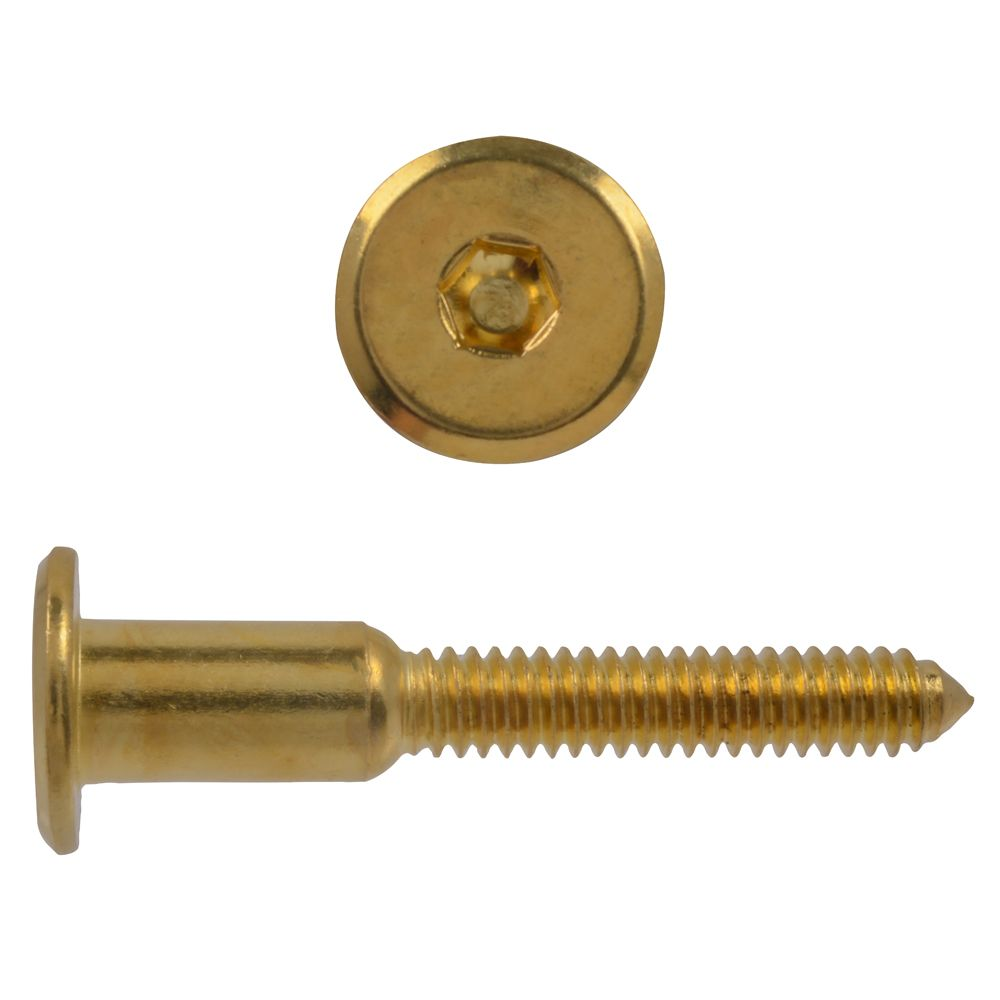 1/4X2 Connector Bolt Brass Pltd