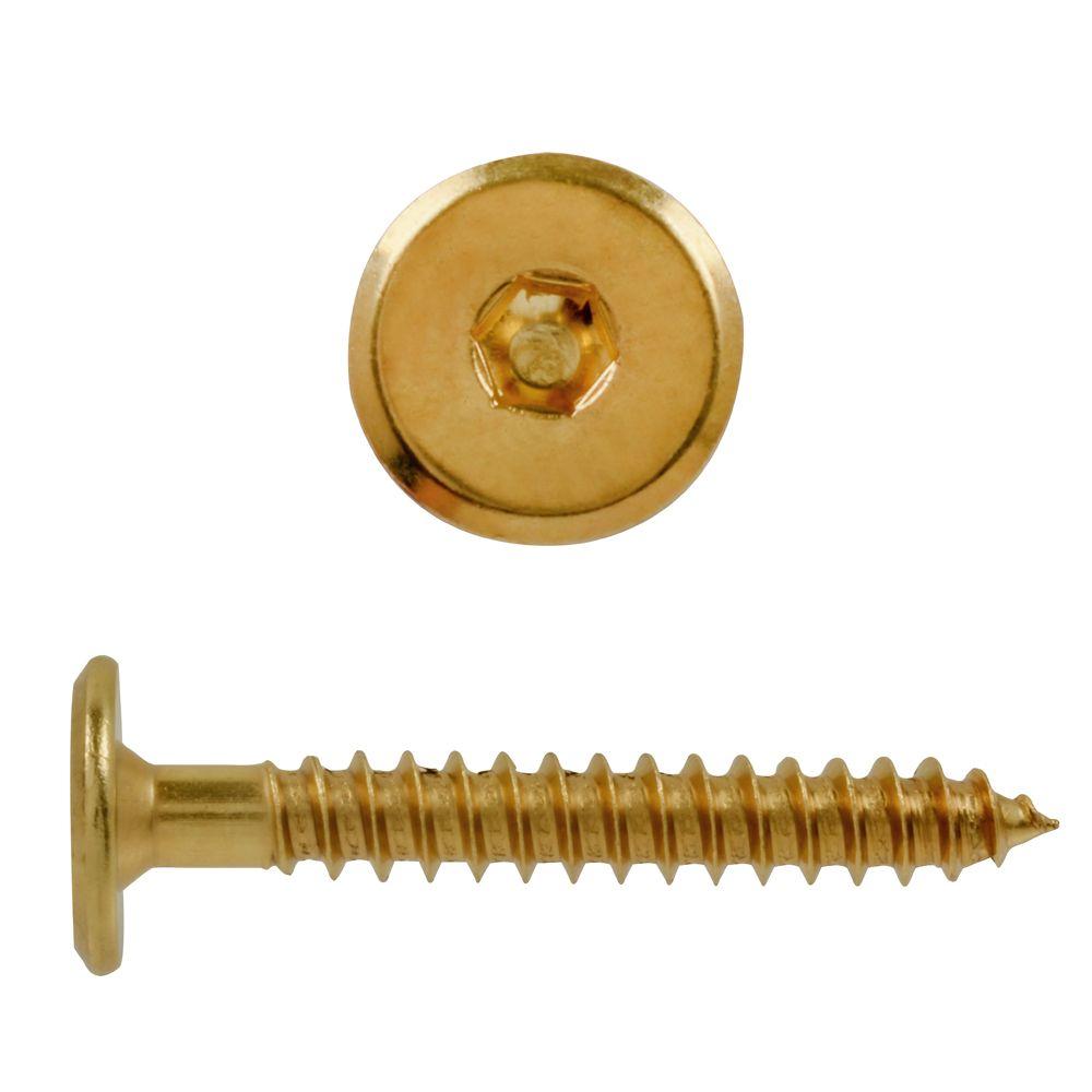 M7X2 Connector Screw Brass Pltd