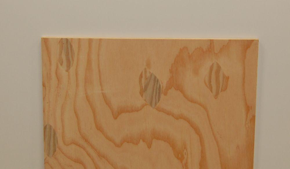 1/4 Inch  2 Feet x 4 Feet Sanded 1-side Douglas Fir Plywood Handy Panel