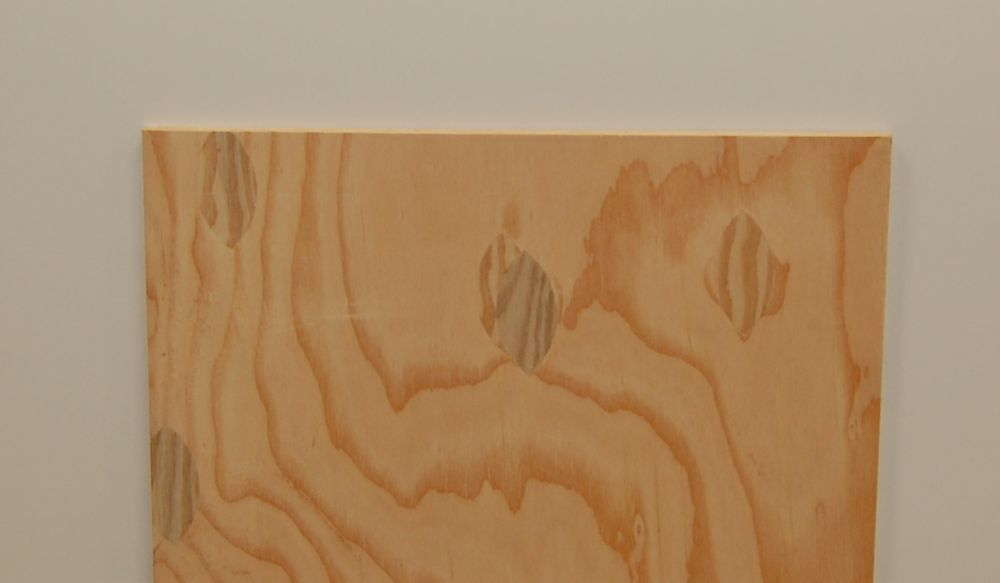 1/4 Inch  4 Feet x 4 Feet Sanded 1-side Douglas Fir Plywood Handy Panel