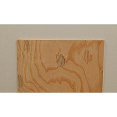 1/2 Inch  2 Feet x 4 Feet Sanded 1-side Douglas Fir Plywood Handy Panel
