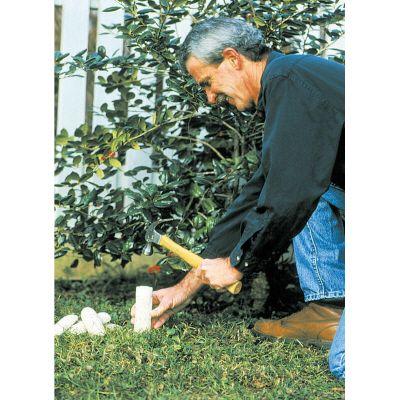 Bâtons d'engrais pour arbres fruitiers Jobe's, 5 par paquet