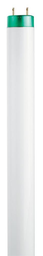 Fluorescent Linéaire T8 17W 24 po Blanc doux (3000K)