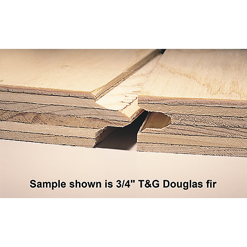 3/4 inch 4 ftx8 ft Standard Spruce Plywood Tongue & Groove